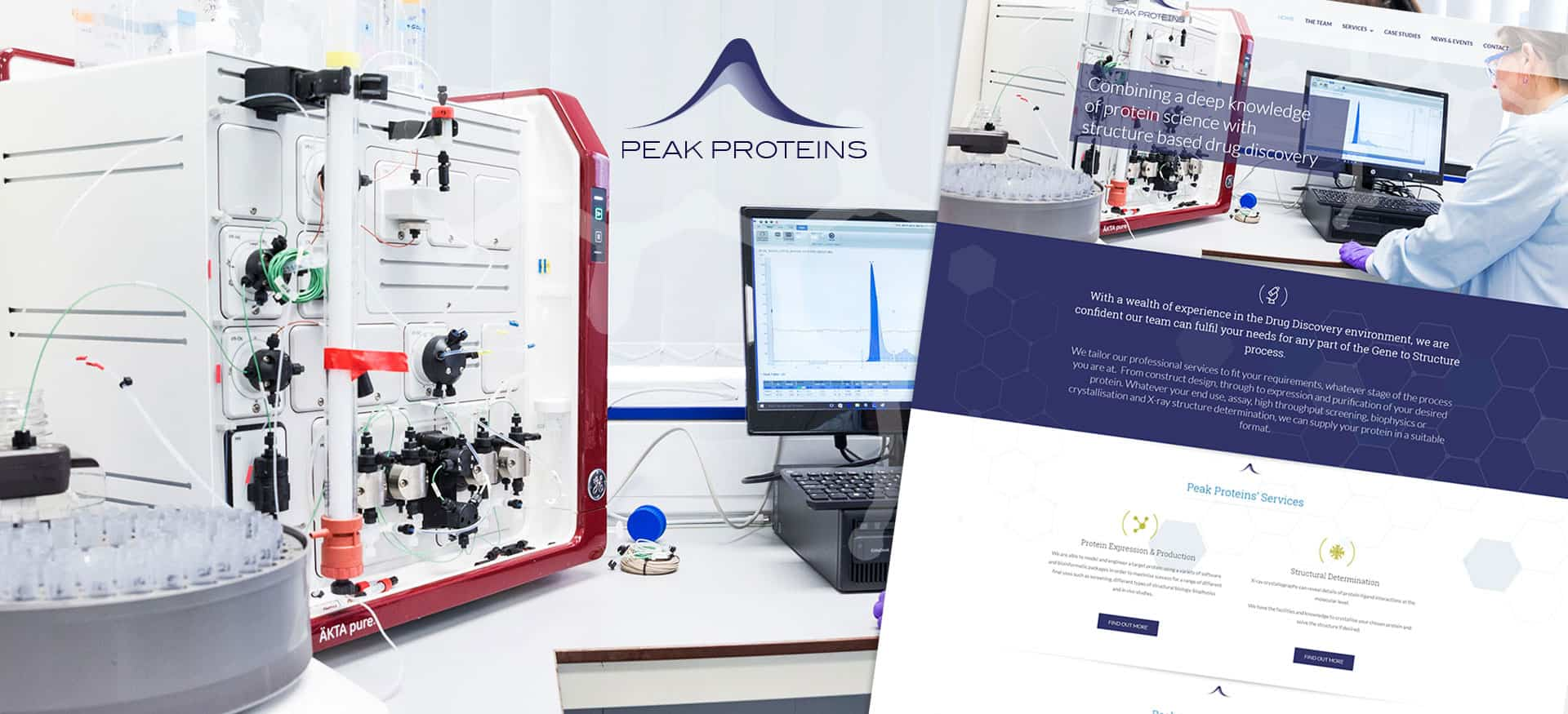 Peak Proteins - BioHub WordPress Website Design and Build